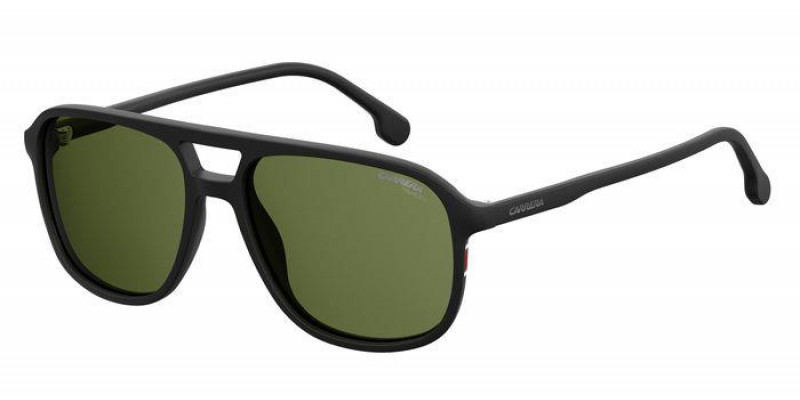 173/S 003 POLARIZED
