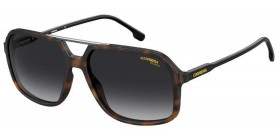 229/S 05L POLARIZED