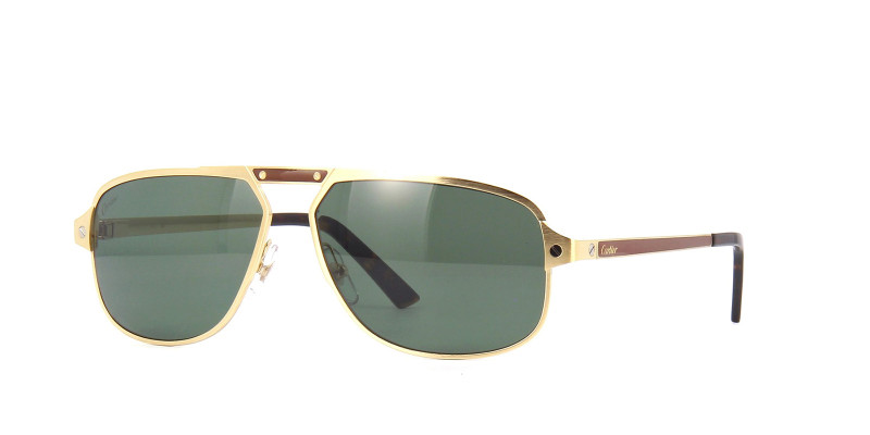 CT0102S 003 POLARIZED