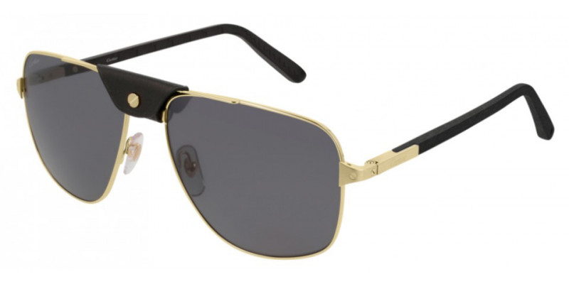 CT0097S 001 POLARIZED