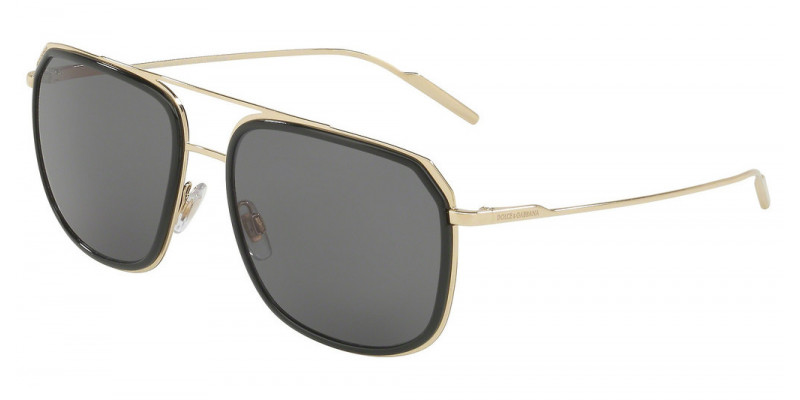 DG2165 488/81 POLARIZED