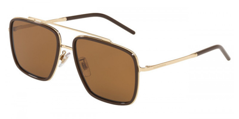 DG2220 488/83 POLARIZED