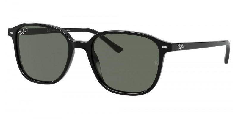 RB2193 LEONARD 901/58 POLARIZED